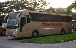 Transnational Express Bus